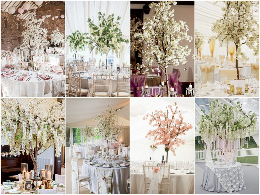 Blossom trees and wisteria trees for hire chillie breeze blossom and wisteria wedding trees for hire junglespirit Choice Image