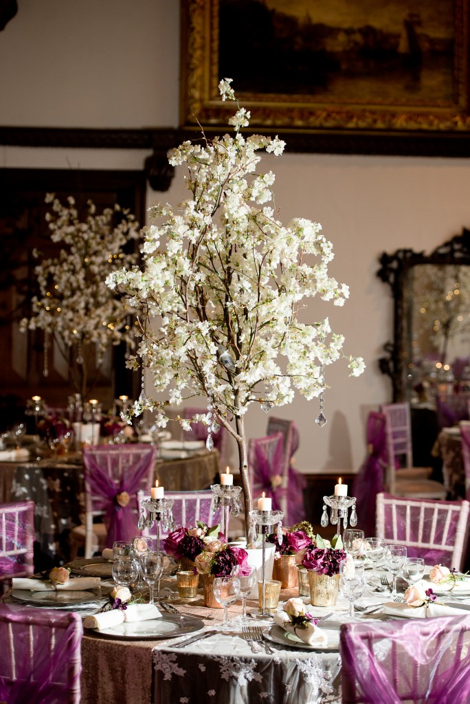 Blossom trees for hire Chillie Breeze